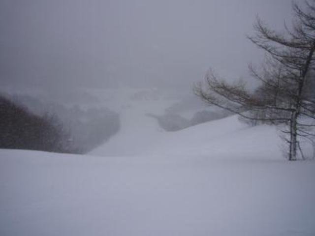 ホワイトワールド尾瀬岩鞍の写真