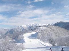 毎年、正月は立山山麓に来ています。 2日通券購入で2日間+ナイターが滑れます。