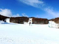 ゲレンデは1コースのみのオープンですが、昨日は雪が降ったようです。