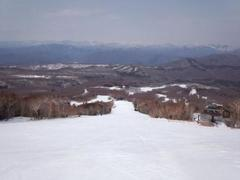 前日裏磐梯に宿泊し、この日はスノーウエイ様よりいただいた東急系の招待券を使おうと、裏磐梯のグランデコに行こうかとも考えていましたが、4/20迄のハンターマウンテン塩原に、約20年ぶりに行ってみることに。 夏のドライブでは数年前に来ていましたが、スキーには学生時代に来たきり。 ゲレンデ構成はすっかり忘れていました。 宿で朝食をたっぷりいただいたので、スキー場には10:00に到着。滑り出しは10:30でした。 天気は良いのですが、山頂で西風が強く、しばらくしてゴンドラが減速運転になりました。 何しろ久しぶりだったので、一通り滑ってみようと、まず足慣らしで初級用クワッドへ。すぐ下にハーフパイプが有り、気になりましたが怪我してもしょうが無いのでスルーし、緩斜面を一本滑り、次に山頂から三通りのルートで下まで降りてみました。 ゴンドラにはラブラブゴンドラと幸運ゴンドラが一台ずつ有り、初め、丁度ラブラブゴンドラに当たってしまいそうになったら、前にいたカップルが乗りたかったようで順番を譲られ、ノーマルに乗りました。 しかも二回目には丁度幸運ゴンドラで、こちらは前後に人が居なかったので乗りました。幸運が有ると良いんですが。 山頂からの二ルートは傾斜や雪質が良く、繰り返し滑るには楽しかったのですが、もう一つのコブは、一部底に草が出ていて(もちろんわたくしは実力的に無理なのですが)楽しめず、また中腹からの中級コースは全体に黄砂の為か茶色く、滑っている人が余り居ません。 しかも下部の緩斜面は緩すぎて止まりそう。 稼働しているのがゴンドラと頂上のペアリフト、下部の初級用クワッドのみなので、下の緩斜面がいやで、最終的には頂上のペアリフトをぐるぐる回しました。 ここでもゆっくり小回りをしていると昨日に続いて大転倒。原因がわかりました。外脚に意識が行き過ぎて、内脚の処理がだめで、板が重なったのです。以後股関節を意識し滑るようにして改善したと思います。 ぼーっとしているとダメで、なかなか上達しないなあと、実力のなさを痛感しました。 滑り出しが遅かったので、夕方まで滑ろうかと思いましたが、少し通り雨がぱらついたので、14:30に上がりました。 ハイシーズンに来ればもっと楽しめたでしょう。 塩原の日帰り温泉に入浴し、下道で帰路へ。途中地元近くで給油、洗車し20:30帰宅。 高速料金の値上がりや割引の廃止・縮小とガソリン代の値上がりが、どうしても今後のスキー活動に影響しそうです。
