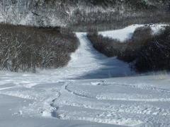 前日、福島市内は暖かく期待せずに行ったら予想外の深雪で思いっきり楽しめました。下のゲレンデはそれなりに整備が行届きとても滑りやすかったです。