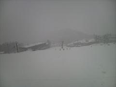 今シーズン初の白馬。全コースはオープンしていなかったがほぼ満足。1日中の雪と午後の強風で早めに退散。