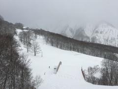 昨シーズンと見紛うかのような薄い雪にゲンナリしましたが、それでもパウダーが若干あったので良かったです。