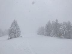 朝から凄い吹雪でとても寒かったがリフトは動いてた