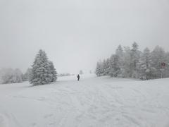 雪が降ってましたが、志賀高原の割には寒さも厳しく無かった。ファミリーとダイヤモンドは大会でコース規制リフト待ち出来てた。