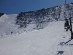 白山セイモア