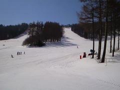 3月後半にしては雪質良し。大会ゲレンデの先入観どおりでしたが。