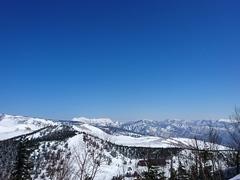 春スキー日和。
