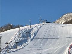 晴れて気持ちのいい日。 スキーの練習を黙々とする。