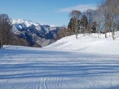 奥利根スノーパークに行ってきました。それほど大きなスキー場ではないけど、上部から4キロの長さの変化のある斜面が続き、滑りごたえがあります。近年、山頂付近に新コースが施設されたり、深雪エリアが増設されたとのことです。この日は素晴らしく快晴に恵まれ、新設されたブナの木コースからの眺めは最高でした。また、高速インターからこのスキー場までは、道路に融雪設備等があって、比較的アクセスもいい方だと思います。