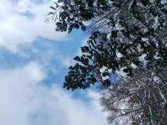 星野リゾート アルツ磐梯
