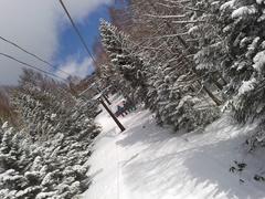 7日土曜は、雨でないだけマシと思って滑ってましたが、8日日曜は、新雪滑走が楽しめました。大満足!