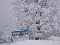 2月10日に、斑尾高原スキー場に行ってきました。詳細は口コミを参照してください。