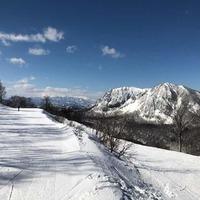 黒伏高原スノーパーク ジャングル・ジャングル
