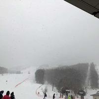 しらかば2in1スキー場