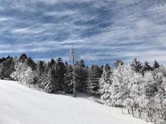 パルコール嬬恋スキーリゾート