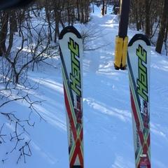 スキーヤー222