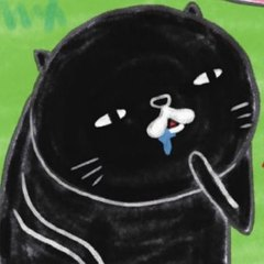 黒猫13号